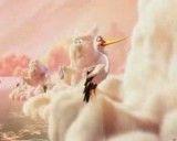 مهمانی ابرها - Party Cloudy