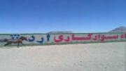 اسب عرب درشوری کره تیمور ملک ، رعد . باشگاه سوارکاری اردشیربابکان