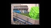 دستگاه تغذیه وان شستشوی سبزی