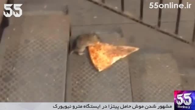 مشهور شدن موش حامل پیتزا در ایستگاه مترو نیویورک