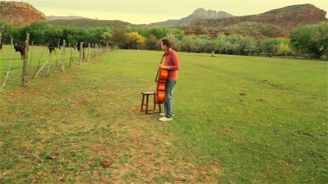steven و صدای گاو با cello