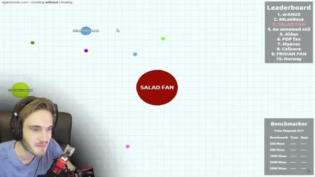 AGARIO WITH FANS