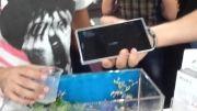 تست ضد آب بودن Sony Xperia Z ULtra