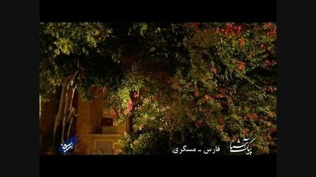 پیک آشنا (فارس - مسگری)