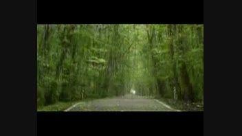 گیلان سرزمین باران، جنگل و دریا