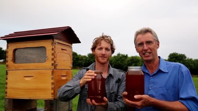 جمع آوری عسل بدون باز کردن کندو