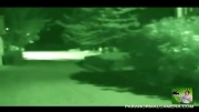 موجود فضایی شکار دوربین در کالیفرنیا