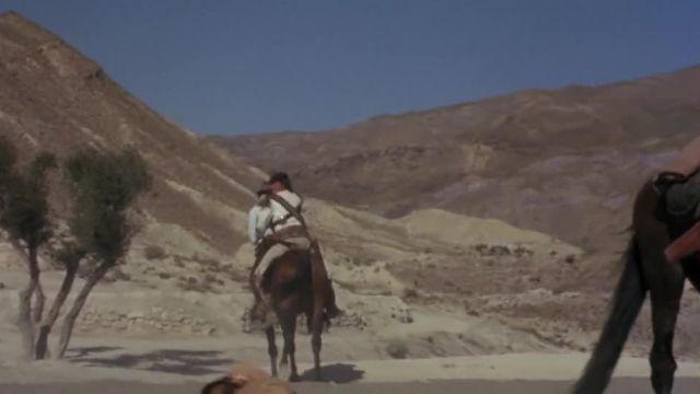 فیلم کمدی وسترن سه حرفه ای (رفقا)  Companeros 1970 #دوبله
