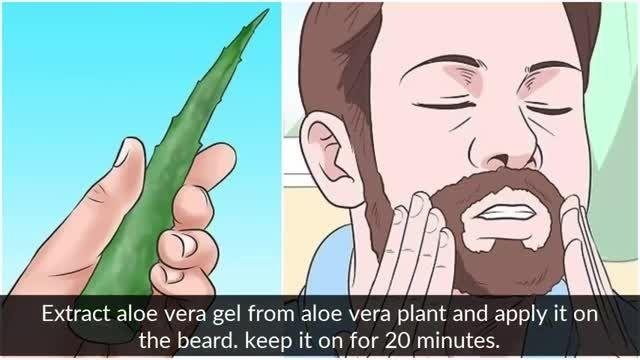 معرفی نکات کلیدی سلامت - استفاده از الوئه ورا برای رشد ریش