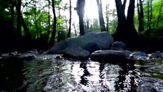 دانلود موزیک ویدیو دنیا از حبیب