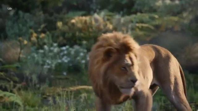 دانلود انیمیشن سینمایی - شیر شاه دوبله فارسی 2019 Lion King