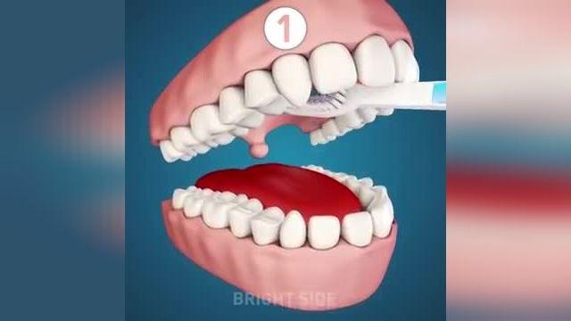 معرفی نکات کلیدی سلامت -  30 ترفند لازم مراقبت از دندان در چند دقیقه