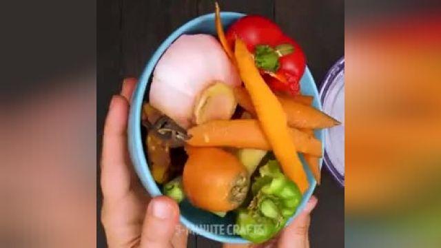 ترفند کاربردی برای پرورش باغچه خانه خود