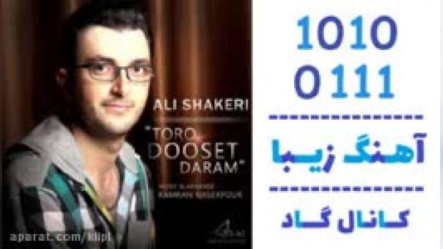 دانلود آهنگ تورو دوست دارم از علی شاکری