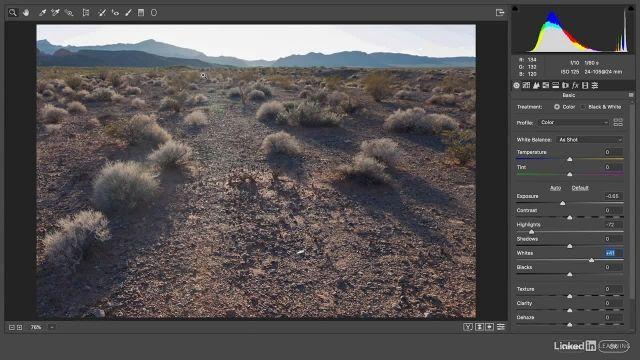 آموزش فتوشاپ - اعمال تغییرات انجام شده در پنجره ی camera raw به شکل یک فیلتر