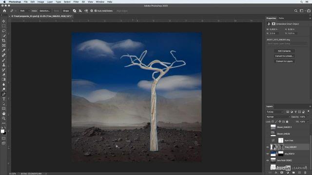 آموزش فتوشاپ برای عکاسان - اضافه کردن طرح و شکل اولیه