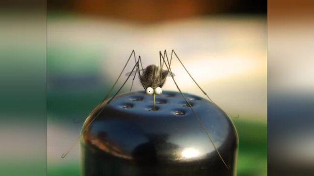 دانلود انیمیشن زندگی خصوصی حشرات قسمت پنجاه و دو