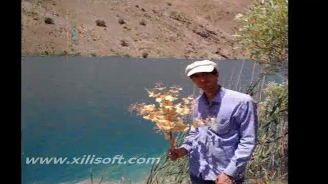 دکلمه شعر گل پژمرده/ابوالقاسم کریمی