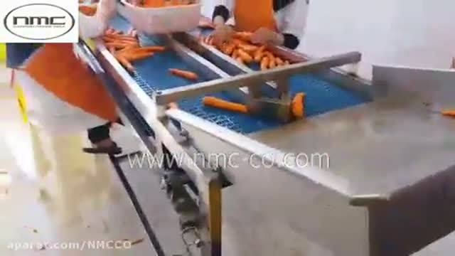 شستشو و بسته بندی سبزیجات - مرکبات - هویج - میوه جات