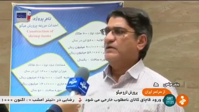 Iran Brine shrimp farming, Bandar-e Abbas county پرورش لارو میگو شهرستان بندرعباس ایران
