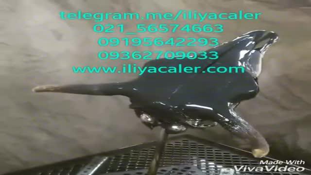 دستگاه آبکاری پاششی فانتاکروم 09362709033 ایلیاکالر