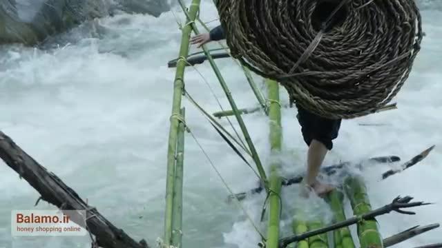 شکارچیان عسل در کوهستان نپال