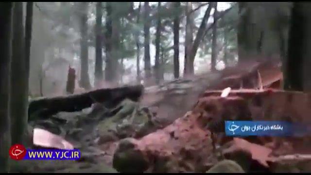 تخریب جنگل ها و فرسایش خاک در استان گلستان، مهمترین عامل وقوع سیل
