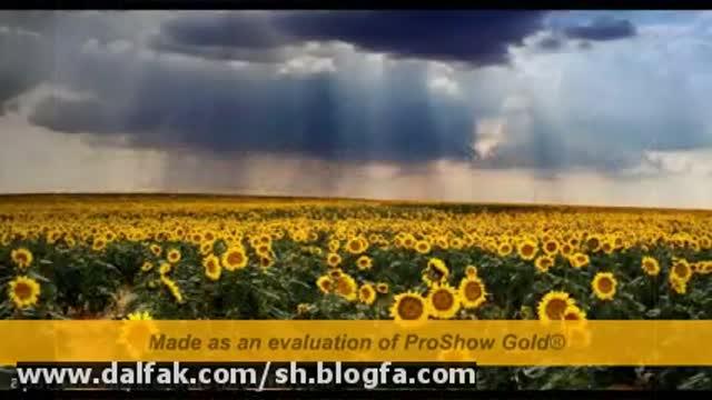 ساخت کلیپ-حسام الدین شفیعیان-با میکس آهنگ صبح شده