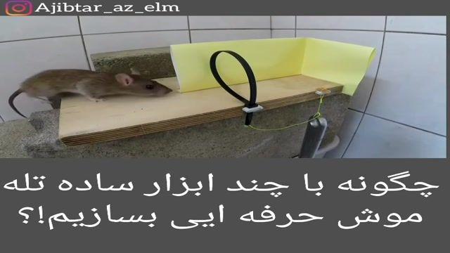 ساخت تله موش حرفه ای با چند ابزار ساده