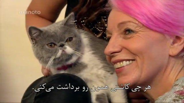 برنامه حیوانات مشهور دوبله فارسی
