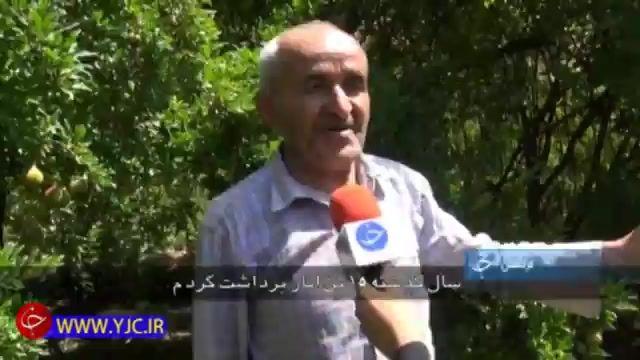 برگزاری اولین جشنواره انار در اورامان کردستان