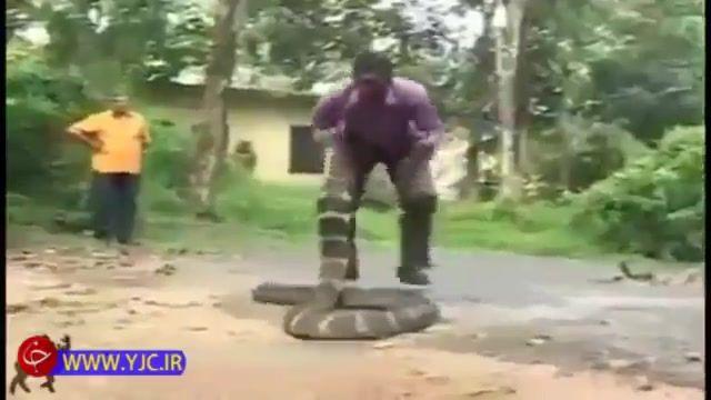 تفریح مرد هندی با بازی با مارهای سمی !