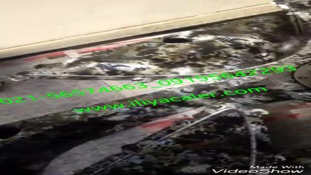 دستگاه کروم پاش فانتاکروم 02156574663 ایلیاکالر