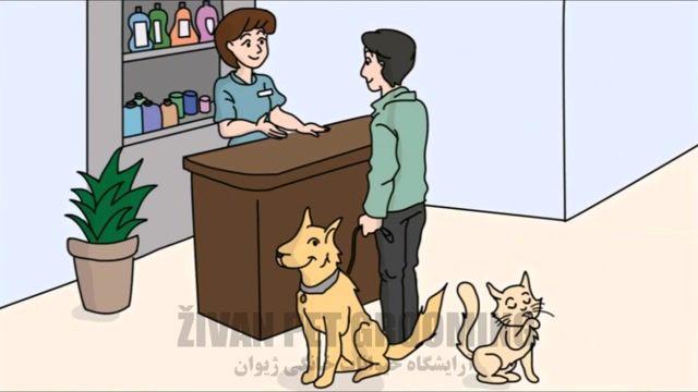 آرایشگاه حیوانات خانگی ژیوان