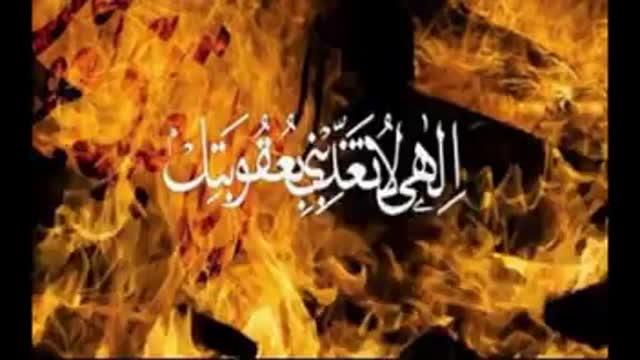 یکی از شهود روز قیامت زمین خواهد بود