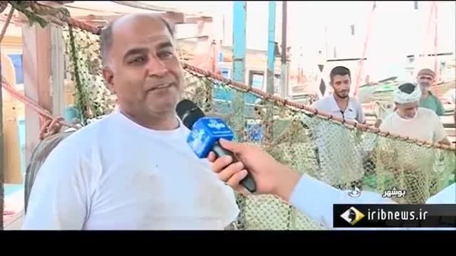 Iran Shrimp fishing season in Persian Gulf, Bushehr port فصل صید میگو بندر بوشهر ایران