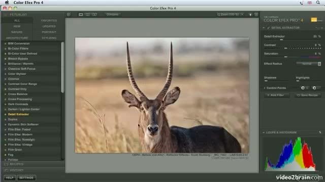 آموزش پلاگین های فتوشاپ ( پلاگین Color Efex Pro )