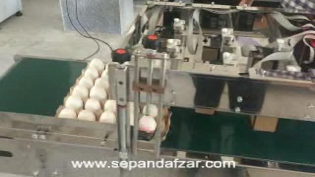 جت پرینتر تخم مرغی سپندافزار