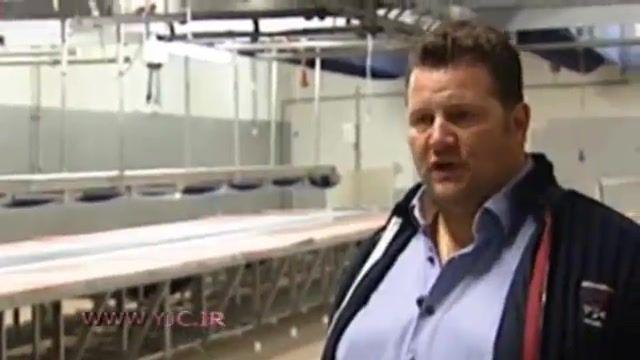 فروش گوشت اسبهای پیر به جای گوشت گاو توسط تولیدکننده محصولات پروتیینی