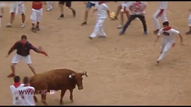 گاوبازی ورزش سنتی اسپانیا یکی از  خطرناکترین ورزش ها