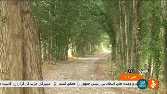 Iran Rest time for forests, Golestan province زمان آسایش برای جنگل های گلستان ایران