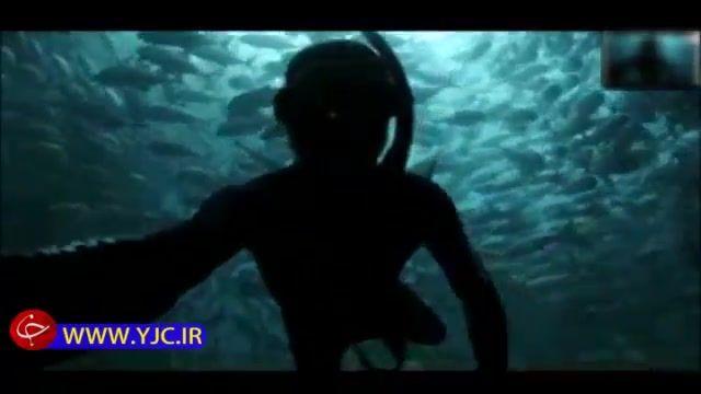 غواصی دیدنی و شناکردن در میان انبوهی از ماهیها