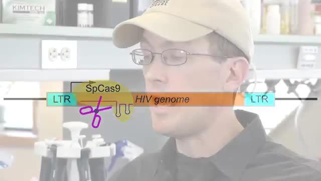 هایلایت 253: از حذف ویروس HIV از بدن موش آزمایشگاهی تا ساخت دوربینی با سرعت 5 تریلیون بر ثانیه