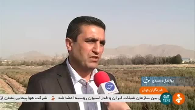 Iran Cultivation Mountain vegetables, Shahr-e Kord county کاشت سبزیجات کوهی شهرستان شهرکرد ایران