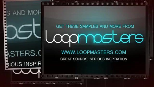 دانلود پریست تکنو Loopmasters Patchworx 81 Timmo Techo Sylenth Presets