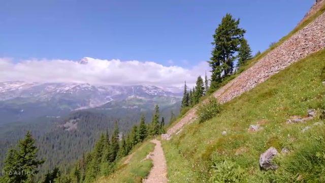 طبیعتی زیبا از پارک ملی کوه رینیر در واشنگتن
