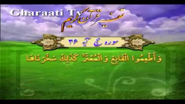 قرایتی / تفسیر آیه 36 سوره حج، نحر شتر