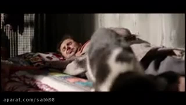 دانلود رایگان فیلم شعله ور (حمید نعمت الله) کیفیت خارق العاده 4k