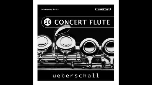 دانلود وی اس تی فلوت Ueberschall Concert Flute Delicate Melodic Moods ELASTIK