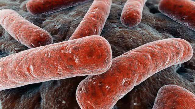 10 تا از مرگبارترین و خطرناک ترین بیماری ها